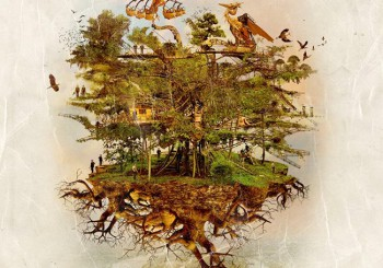le gîte O naturel avec l'arbre aux hérons